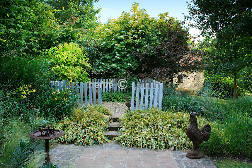 France, Normandy, Jardins du pays d'Auge: the coop and staircase lined with Acorus gramineus 'Ogon'.(Prior written approval must be required for any advertising usage. Obligatory mention of the garden's name)