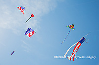 63495-02708 Kites flying at Flagler Beach Flagler Beach, FL