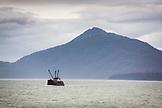 ALASKA, Juneau, fishing boat returns to harbor in Stephens Passage