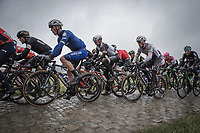 Later race winner Yves Lampaert (BEL/Quick Step Floors) riding the cobbles. <br /> <br /> 73th Dwars Door Vlaanderen (1.UWT)<br /> 1day race: Roeselare &rsaquo; Waregem BEL (180km)