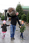 13-12-2014: Paudie, Milly and Jack Spillane from Killarney collect their christmas tree the Killarney Christmas Tree Company in County Kerry on Saturday.<br /> Picture by Don MacMonagle