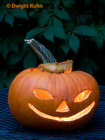 DC08-604z  Jack-o-Lantern Pumpkin with candle light, Halloween