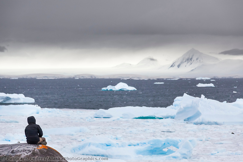 Hiker pauses for reflection on Booth Island, western Antarctic Peninsula.