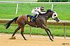 Harley's Joy winning at Delaware Park on 8/1/16