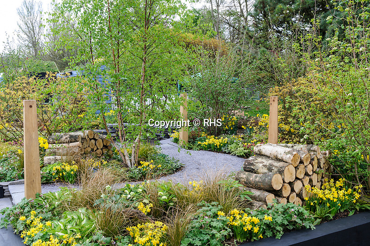 A Woodland Garden. Sponsored by Esmor's JCB Wheels of Fortune Marathon. Designed by Andrew Fisher Tomlin and Dan Bowyer. RHS Show Cardiff 2014