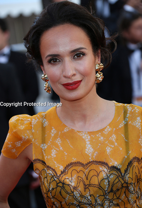 AMELLE CHAHBI<br /> Okja Red Carpet Arrivals - The 70th Annual Cannes Film Festival<br /> CANNES, FRANCE - MAY 19: attends the 'Okja' screening during the 70th annual Cannes Film Festival at Palais des Festivals on May 19, 2017 in Cannes