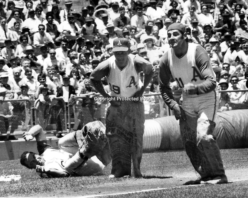 Oakland Athletics in a &quot;sack race&quot; before game.<br /> (left on ground is Sal Banda, center is Campy Campaneris, and #11 Warren Bogle.(1969 photo by Ron Riesterer)