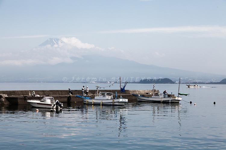 Izu peninsula, July 2012 - Mount Fuji as seen from Numazu harbor in Izu.