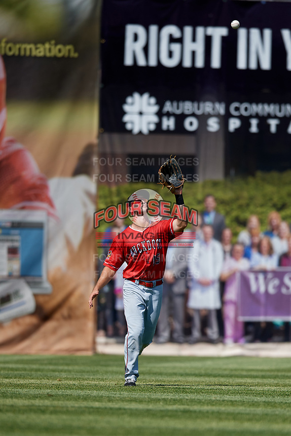 Batavia Muckdogs left fielder Matt Brooks (15) settles under a fly ball during a game against the Auburn Doubledays on June 17, 2018 at Falcon Park in Auburn, New York.  Auburn defeated Batavia 10-6.  (Mike Janes/Four Seam Images)