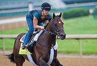 Falling Sky, trained by John Terranova, works out in preparation for the Kentucky Derby at Churchill Downs on April 29, 2013.
