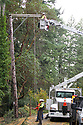 Nov 2, 2013:  Power crew members Ed Fletcher (In Bucket) and lineman Chad Lohrey and Forman Bill Boggs form Potelco worked to repair a #4 Copper wire that was knocked down when a tree was blown down along Tracyton NW Blvd and Stampede NW Blvd.