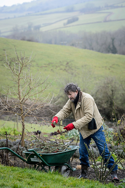 Dan pruning Roses