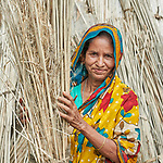 Jamela Khatun dries jute in the sun in West Fasura, a village on an island in the Brahmaputra River in northern Bangladesh. Severe flooding in August 2017 destroyed the island's crops but RDRS Bangladesh, a member of the ACT Alliance, provided emergency cash grants to Khatun and other vulnerable island residents so they could reestablish their household economies and restart their lives. Khatun, who lost her house and animals to the flood waters, used her cash grant to buy food, a goat, and pay some of her children's education costs.