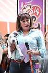 Anjelica Huston (SMASH) .onstage at Broadway Barks 14 at the Booth Theatre on July 14, 2012 in New York City. Marking its 14th anniversary, Broadway Barks!, founded by Bernadette Peters and Mary Tyler Moore helps many of New York City's shelter animals find permanent homes and also inform New Yorkers about the plight of the thousands of homeless dogs and cats in the metropolitan area.