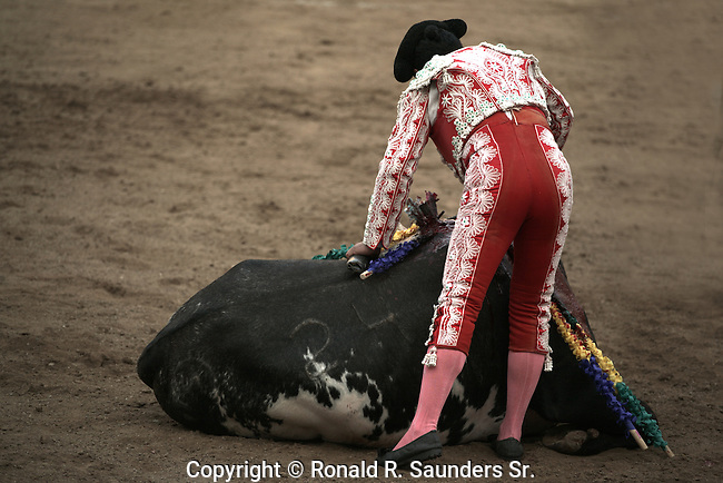 Matador delivers death blow to dying bull