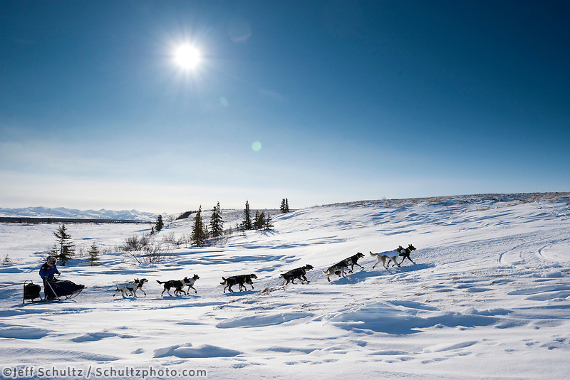 Martin Buser runs on the trail a few miles before the Unalakleet checkpoint during Iditarod 2009