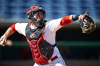 Ball State Cardinals catcher Michael Richey (5) during practice before a game against the Louisville Cardinals on February 19, 2017 at Spectrum Field in Clearwater, Florida.  Louisville defeated Ball State 10-4.  (Mike Janes/Four Seam Images)