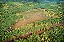 Aerial view of a bog near Chernobyl, Ukraine. This image was shot from a Ukrainian government helicopter during a survey of the Chernobyl Exclusion Zone in October, 2012.