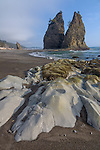 Olympic National Park, WA <br />  Seastacks and exposed rocks at low tide, Rialto Beach