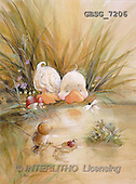 Ron, CUTE ANIMALS, Quacker, paintings, duck, frog, bird(GBSG7206,#AC#) Enten, patos, illustrations, pinturas