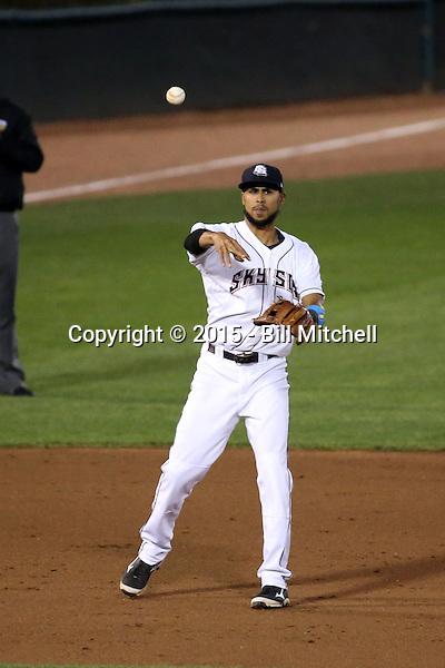 Yadiel Rivera -2015 Colorado Springs Sky Sox (Bill Mitchell)