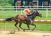 Mr Num Num winning at Delaware Park on 8/11/15