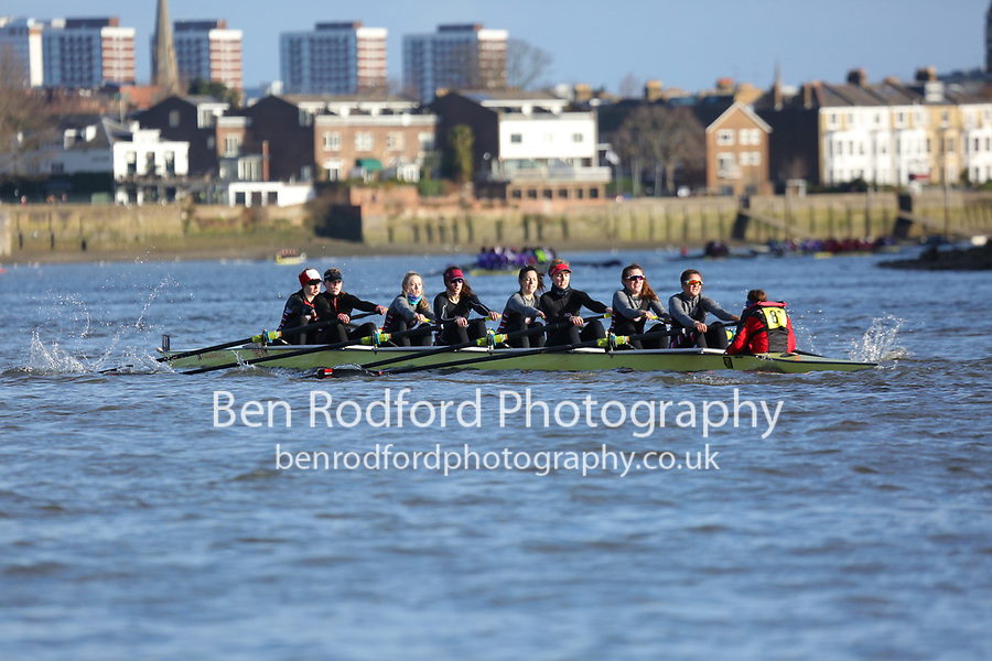 Crew: 81   Thames (Fuller)   W Senior<br /> <br /> Quintin Head 2019<br /> <br /> To purchase this photo, or to see pricing information for Prints and Downloads, click the blue 'Add to Cart' button at the top-right of the page.