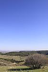 Israel, Menashe Heights, a view of Emek Hashalom in Ramat Menashe Park.