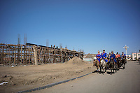 Mongolian newlyweds and relatives ride their horses during a procession towards the venue of a traditional wedding ceremony in Damao Banner, Inner Mongolia, China, October 2014.