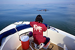 326 Wild Dolphin Societies - FL