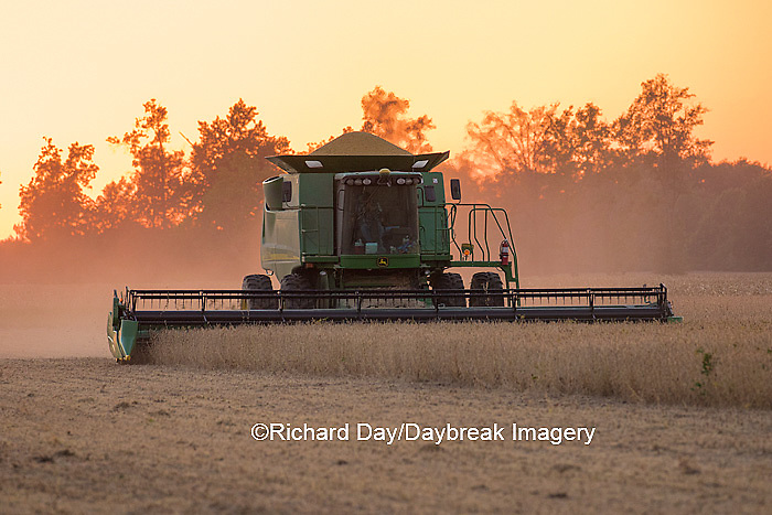 63801-07118 Farmer harvesting soybeans at sunset, Marion Co., IL