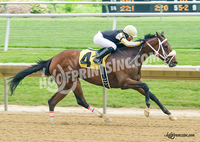 Winning Player winning at Delaware Park on 5/30/15