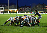 George Horne of London Scottish Football Club puts the ball into the scrum during the Greene King IPA Championship match between London Scottish Football Club and Ealing Trailfinders at Richmond Athletic Ground, Richmond, United Kingdom on 26 December 2015. Photo by Alan  Stanford / PRiME Media Images