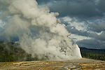 Eruption of geothermal steam and water venting out of Old Faithful Geyser, Upper Geyser Basin, Yellowstone National Park, Wyoming