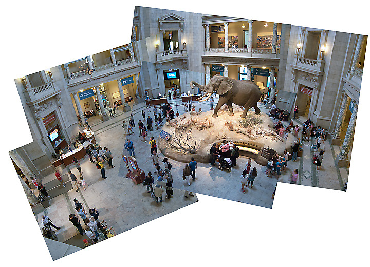 Natural History Museum, Washington, D.C.
