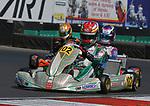 CIK-FIA  European Championship
