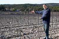 Christian Mocci Domaine de Mas de Martin, St Bauzille de Montmel. Gres de Montpellier. Languedoc. Vines trained in Cordon royat pruning. Owner winemaker. In the vineyard. France. Europe.