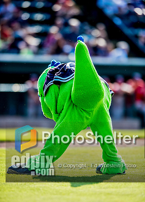 16 July 2017: The Vermont Lake Monsters Mascot Champ gives the Champ Hex to the opponents during a game against the Auburn Doubledays at Centennial Field in Burlington, Vermont. The Monsters defeated the Doubledays 6-3 in NY Penn League action. Mandatory Credit: Ed Wolfstein Photo *** RAW (NEF) Image File Available ***