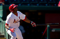 Xavier Scruggs (15) of the Springfield Cardinals watches a hit ball fly foul during a game against the Tulsa Drillers at Hammons Field on September 9, 2012 in Springfield, Missouri. (David Welker/Four Seam Images)