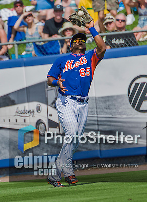 8 March 2015: New York Mets infielder Cesar Puello in Spring Training action against the Boston Red Sox at Tradition Field in Port St. Lucie, Florida. The Mets fell to the Red Sox 6-3 in Grapefruit League play. Mandatory Credit: Ed Wolfstein Photo *** RAW (NEF) Image File Available ***