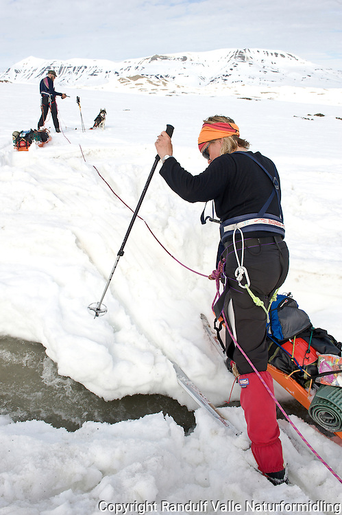 Taulag på Sveabreen, Svalbard. ---- Skiers roped up on Sveabreen, Svalbard.