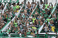 PALMIRA - COLOMBIA, 20-07-2019: Hinchas del Cali animan a su equipo durante partido entre Deportivo Cali y Jaguares de Córdoba por la fecha 2 de la Liga Águila II 2019 jugado en el estadio Deportivo Cali de la ciudad de Palmira. / Fans of Cali cheer for their team during match for the date 2 as part Aguila League II 2019 between Deportivo Cali and Jaguares de Cordoba at Deportivo Cali stadium in Palmira city. Photo: VizzorImage / Gabriel Aponte / Staff