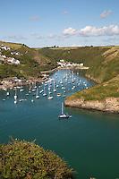 United Kingdom, Wales, Pembrokeshire, Solva: Inlet and River Solva at Pembrokeshire Coast National Park | Grossbritannien, Wales, Pembrokeshire, Solva: Muendung des Flusses Solva im Pembrokeshire Coast National Park