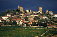 Europe/France/Rhône-Alpes/69/Rhône/Oingt: Vignoble du Beaujolais