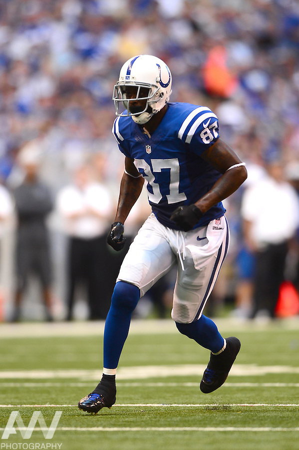 Sep 28, 2014; Indianapolis, IN, USA; Indianapolis Colts wide receiver Reggie Wayne (87) during the fourth quarter against the Tennessee Titans at Lucas Oil Stadium. Colts defeated the Titans 41-17. Mandatory Credit: Andrew Weber-USA TODAY Sports