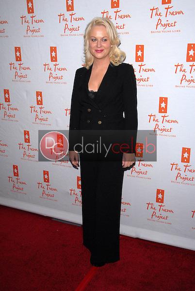 Amy Poehler<br /> at Trevor Live, benefitting the Trevor Project, Hollywood Palladium, Hollywood, CA. 12-05-10<br /> David Edwards/DailyCeleb.com 818-249-4998