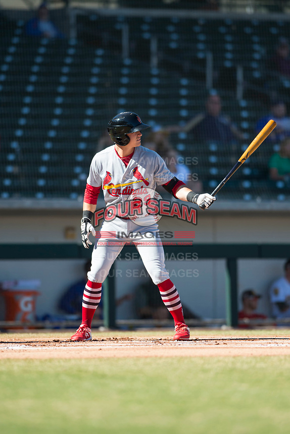 Surprise Saguaros second baseman Andy Young (29), of the St. Louis Cardinals organization, at bat during an Arizona Fall League game against the Mesa Solar Sox at Sloan Park on November 1, 2018 in Mesa, Arizona. Surprise defeated Mesa 5-4 . (Zachary Lucy/Four Seam Images)