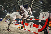 AUS-Kate Hinschen rides CD Visage during the Harrison Lane Equitana New Zealand Open Grand Prix Jumping. 2017 NZL-Equitana Auckland. ASB Showgrounds. Friday 24 November. Copyright Photo: Libby Law Photography