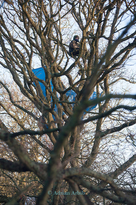 In the trees the early morning  Decoy Pond ,  Bexhill Hasting bypass protest.