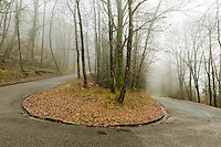 Passes, Malcantone, Ticino, Road, Autumn